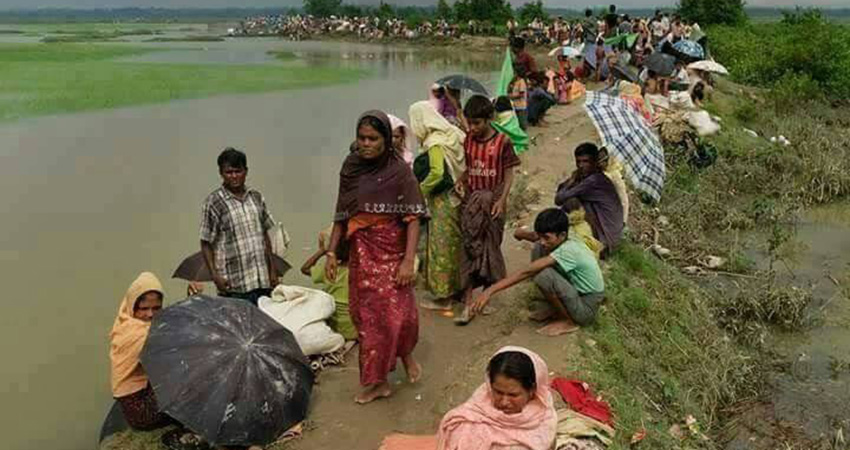 Rohingya in Peril: Crisis in Myanmar with Dr. Maung Zarni