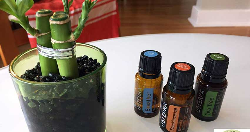 Atelier sur les huiles essentielles