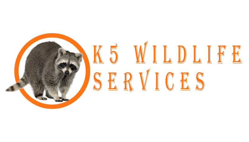 K5 Wildlife Services