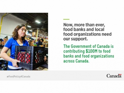Supporting Food Banks and Local Food Organizations to Address the Increase of Food Insecurity in Canada Due to COVID-19